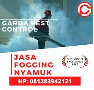 Jasa Fogging di Jayapura