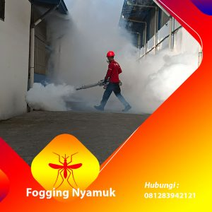 Jasa Fogging di Halmahera Utara