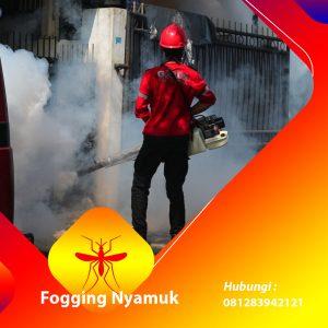 Jasa Fogging Nyamuk di Magelang