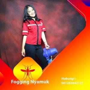Jasa Fogging DBD di Konawe