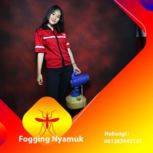Jasa Fogging DBD di Banten
