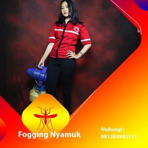 Jasa Fogging DBD di Hulu Sungai Tengah