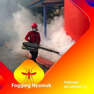 Jasa Fogging DBD di Bireuen