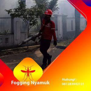 Jasa Fogging DBD di Tanggamus