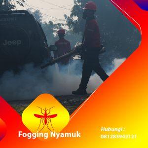 Jasa Fogging Nyamuk di Manggarai Timur