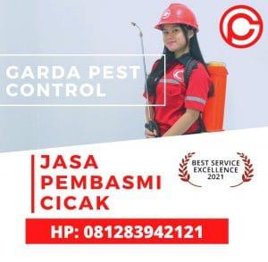 Jasa Pembasmi Cicak di Bandung