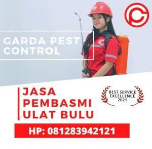 Jasa Pembasmi Ulat Bulu di Bandung